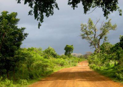 Décor de Casamance. En quittant Tobor  ©LesAteliersPIXEL