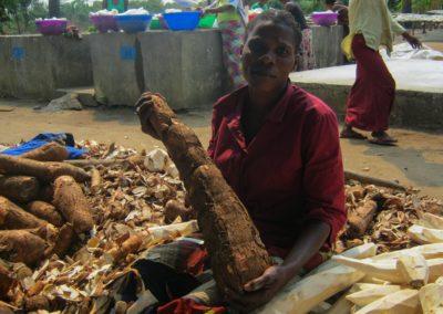 Un tubercule de manioc avant être épluché ©LesAteliersPIXEL
