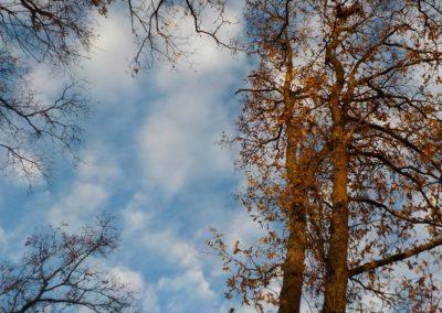 Un trou pour voir le ciel ©LesAteliersPIXEL