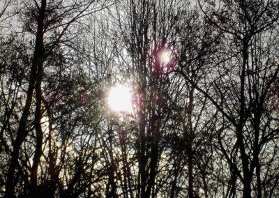 Deux soleils ! ©LesAteliersPIXEL