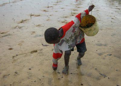 Replanter des palétuviers - une action communautaire ©LesAteliersPIXEL