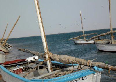 Des lanches : bateaux de pêche traditionnels du banc d'Arguin ©LesAteliersPIXEL