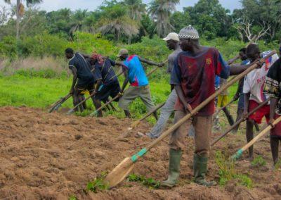 Travail collectif dans les champs ©LesAteliersPIXEL