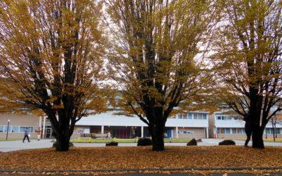 Le collège aux couleurs d'automne