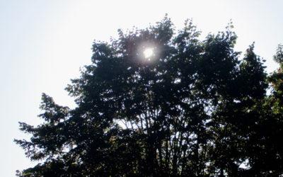 Le rayon de soleil